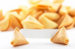 Fortune cookies with white blank paper, shallow depth of field Royalty Free Stock Photography
