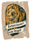 Fortune favours the brave Royalty Free Stock Photography