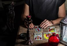 A fortune teller with a black cat read the Tarot cards. stock photo