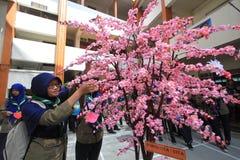 Fortune tree Stock Photos