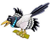 Forty bird. Settled figure a curious thief intellect royalty free illustration