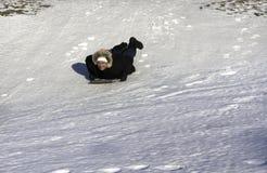Man sledding snow Royalty Free Stock Image