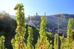 Fortyfikacyjny Metternich Beilstein najlepszy miejsce na Moselle rzece Mosel Palatinate, Niemcy zdjęcie royalty free