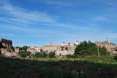 Forum e palatino romani a Roma nel Lazio in Italia Immagini Stock Libere da Diritti