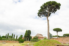 forum Italy rzymski Rome fotografia stock