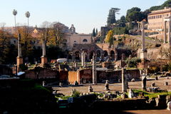 Forum romano rome Royalty Free Stock Photo