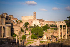 Forum Romanum. With Colosseum in background, Rome, Italy Stock Images