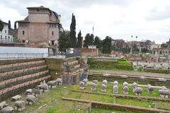 Forum Romanum in Rome, Italy Stock Images