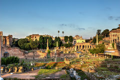 The Forum Romanum in Rome, Italy Royalty Free Stock Images