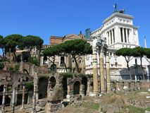 Forum Romanum, Rome Royalty Free Stock Images