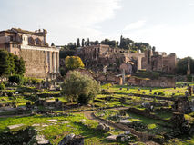 The Forum Romanum in Rome. View of The Forum Romanum in Rome Stock Photo