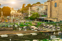 Forum Romanum and Temple of Saturn in Rome Royalty Free Stock Image