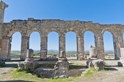 Forum at Volubilis, Morocco Stock Photography