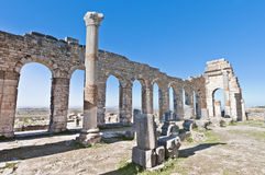 Forum at Volubilis, Morocco Stock Photo