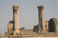 The Forum of Volubilis Royalty Free Stock Photo
