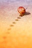 Forward!. Slow helix make fast move Stock Image