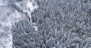 Forward aerial top view over car travelling on hairpin bend turn road in mountain winter snow covered forest. White pine. Tree woods. Snowy street path stock video footage