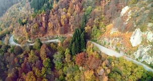 Forward aerial top view over car travelling on road in colorful autumn forest.Fall orange,green,yellow red tree woods. Mountains street path establisher.4k stock video footage