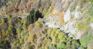 Forward aerial top view over yellow vintage car travelling on road in colorful autumn forest.Fall orange,green,yellow. Forward aerial top view over car stock footage