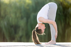 Forward bend head to knees pose. Sporty smiling attractive young woman practicing yoga, doing standing forward bend, head to knees exercise, uttanasana pose Stock Photos