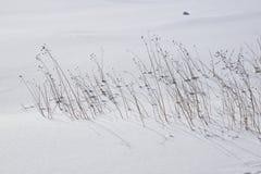 Forward V snowfield frozen Humber River Stock Image