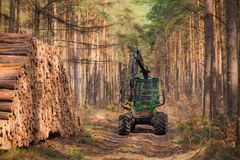 Forwarder. For transporting wood in the forest royalty free stock image