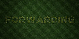 FORWARDING - fresh Grass letters with flowers and dandelions - 3D rendered royalty free stock image Royalty Free Stock Image