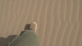 Forze speciali nel deserto archivi video