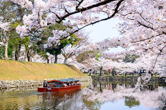 Fosa de Hikone Castle foto de archivo libre de regalías