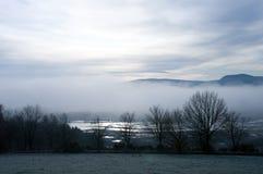 Foschia blu fredda di mattina Fotografia Stock
