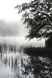 Foschia che si alza da un lago Fotografie Stock Libere da Diritti