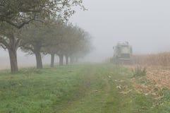Foschia del campo di mais e giorno piovoso fotografie stock libere da diritti