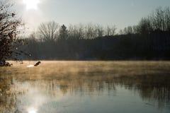 Foschia del fiume Fotografia Stock