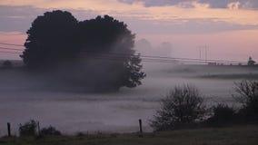 Foschia della nebbia di mattina del campo del paese stock footage