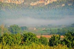 Foschia della valle di Vinales di mattina, Cuba Immagini Stock Libere da Diritti
