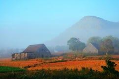 Foschia della valle di Vinales di mattina, Cuba Immagine Stock