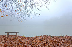 Foschia di autunno Fotografie Stock