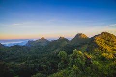 Foschia di mattina alla foresta pluviale tropicale Immagini Stock Libere da Diritti