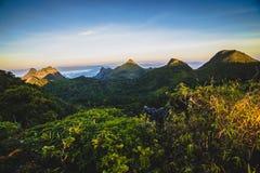 Foschia di mattina alla foresta pluviale tropicale Immagine Stock