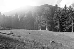 Foschia di mattina in alpi Fotografie Stock