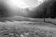 Foschia di mattina in alpi Fotografia Stock Libera da Diritti