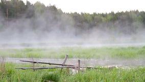 Foschia di mattina sopra l'acqua archivi video