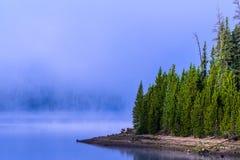 Foschia di mattina su un lago mountain - la bellezza paesaggistica del colore Fotografia Stock