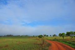 Foschia di mattina sul modo Fotografia Stock Libera da Diritti