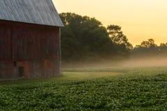 Foschia di mattina sull'azienda agricola fotografie stock