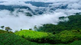 Foschia e montagne a Phu Tubberk Immagini Stock