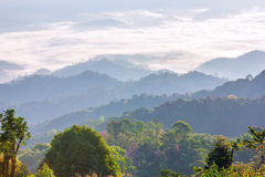 Foschia e nebbia di mattina che si muovono lentamente dal punto di vista nell'alba all'alta montagna in Chiangmai, Tailandia Fotografie Stock
