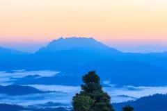 Foschia e nebbia di mattina che si muovono lentamente dal punto di vista nell'alba all'alta montagna in Chiangmai, Tailandia Fotografia Stock