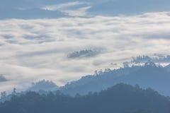 Foschia e nebbia di mattina che si muovono lentamente dal punto di vista nell'alba all'alta montagna in Chiangmai, Tailandia Immagine Stock Libera da Diritti