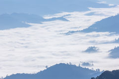 Foschia e nebbia di mattina che si muovono lentamente dal punto di vista nell'alba all'alta montagna in Chiangmai, Tailandia Immagini Stock Libere da Diritti